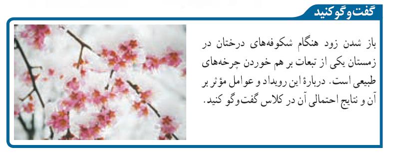 درباره دلیل باز شدن زود هنگام شکوفه های درختان در زمستان