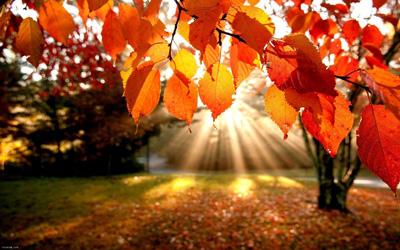 انشا پایه هفتم درباره پاییز