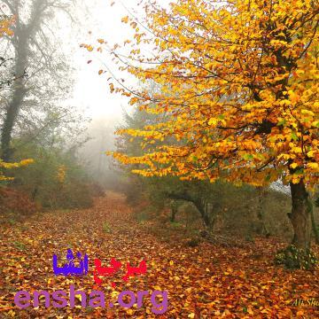 انشا درباره پاییز و زیبایی های آن
